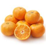 温州ミカンで生活習慣病改善 果物のカロテノイドが老化を防ぐ