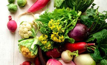 植物性食品ベースの食事療法 2倍の減量成功と筋肉脂肪減少